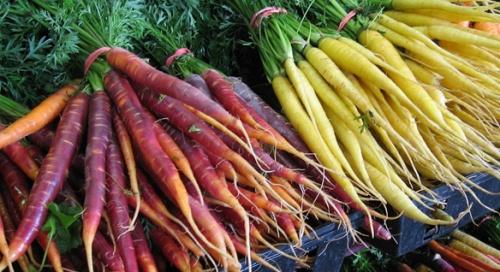 juice-feast-carrots-01